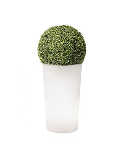 noleggio sfera in eco siepe su vaso x-pot light