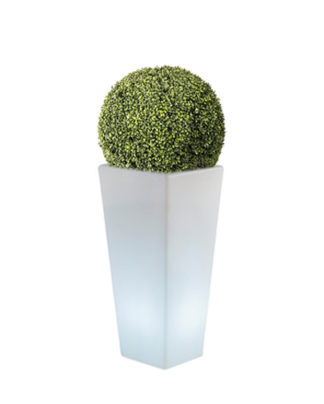 noleggio sfera in eco siepe e vaso y-pot light